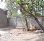 Casa en Venta con Amplio Patio y Antejardín sector Diego Silva: