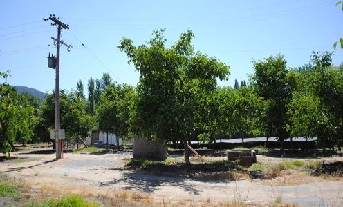 Terreno Agrícola Paine Venta 2014 Terreno Agroinmobiliario 7.5 Hectáreas Laguna de Acuelo Paine en Corretaje Agrícola: Campos  en Venta Corretaje Agrícola: Campos