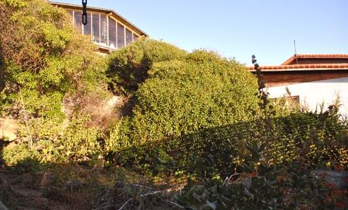 Amplia Casa en Costanera, Playa El Quisco – Litoral Central en Casas en Venta Casa en Venta El Quisco en Venta Casas en Venta en El Quisco