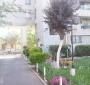 Amplio Departamento de Dos Dormitorios en Santiago Centro: