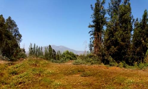 En Venta Parcela de 5.400m2 El Monte, Comuna de Talagante en Parcelas en Venta y Sitios Rurales  en Venta Parcelas en Venta y Sitios Rurales